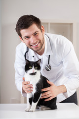 Vet with cat on the table