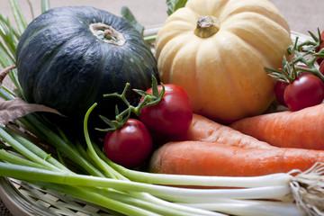 Variety of vegetable