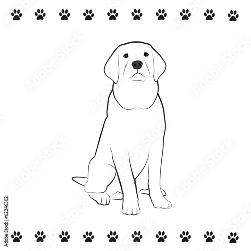 poster of Pooch Drawing