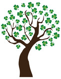 vector shamrock tree