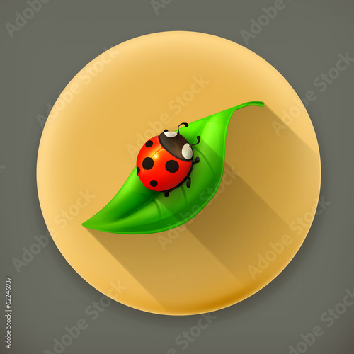 Ladybug on green leaf long shadow vector icon
