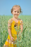 Little cute girl in summer field