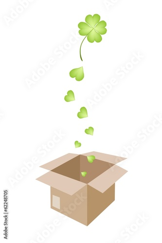 Beautiful Four Leaf Clovers in A Shipping Box