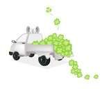 Many Four Leaf Clovers on A Pickup Truck