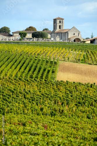 Papiers peints Culture Vineyards of Montagne-Saint-Emilion, Bordeaux Vineyards