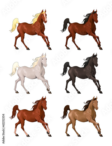 Horses in different colors.