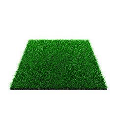 grass squared