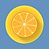 Citrus fruit orange icon