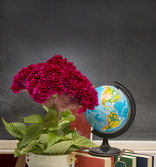Red flower and a globe .