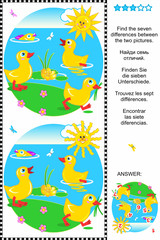 Find the differences visual puzzle - ducklings