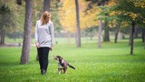 Young woman walking with Australian Shepherd dog outdoors in the