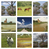 images of  National Park l'Uccellina in tuscan Maremma