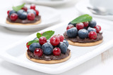 mini cakes with chocolate cream and fresh berries on the plate