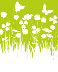 loral,grün,klee,kleeblatt,weiß,blumenwiese,frühling,glückssymbol