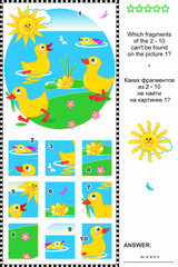 Cute little ducklings visual logic puzzle