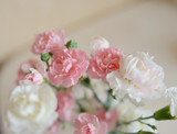 on abstract light background delicate bouquet of pink and white