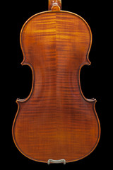 back of the violin