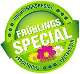 """Button Banner """"Frühlingsspecial"""" grün/pink"""