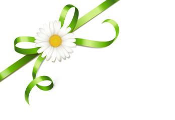 Grüne Schleife mit Margeritenblüte - diagonal