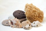Sea sponge for bathing, pumice, sea stones. shell