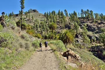 Trekking route