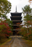 Ninna-ji temple, Kyoto. National treasure of Japan.