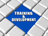 training and development in boxes