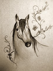 Old horse painting