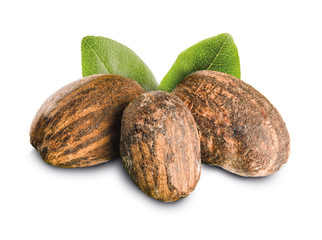 Shea nuts with leaves