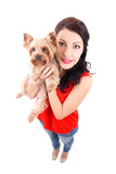 funny portrait of young woman holding little dog yorkshire terri