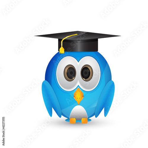 Blue twitter bird with graduation cap