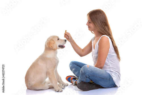 owner training puppy dog