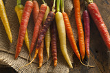 Colorful Multi Colored Raw Carrots