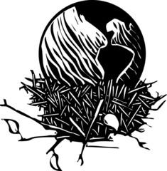 Earth Nest