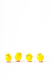 Row of four artificial easter chicks