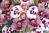 Pink orchids and roses close up