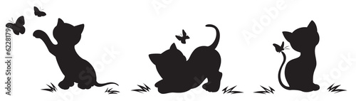 Silhouettes of cats with butterflies - 62281796