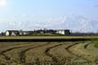 Lomellina spring time countryside panorama