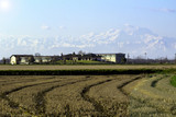 Lomellina spring time countryside panorama