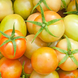Closeup fresh tomatoes