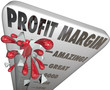 Profit Margin Thermometer Measuring Income Money Earning Growth