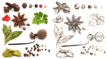 Different spices and herbs isolated on white background and hand