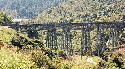 Railway bridge up Taieri Gorge New Zealand