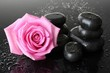 Spa stones with drops and pink rose on grey background