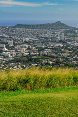 Grassy field with Diamond Head in the background