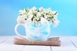 Beautiful snowdrops in vase,