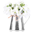 Beautiful snowdrops in metal vase, isolated on white