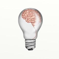 lampadina con cervello