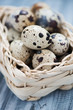 Close-up of a wicker basket with quail eggs, vertical shot