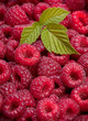 Raspberry with leaf background